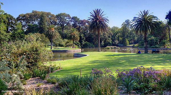 10 thu mien phi melbourne song royal botanica garden
