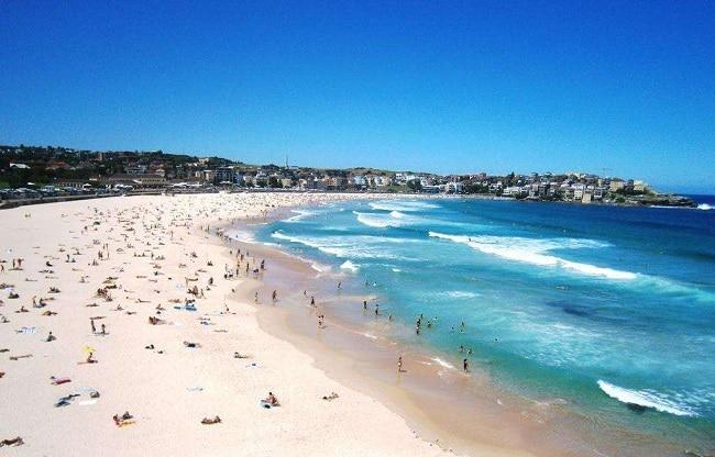 Náo nhiệt ở bãi biển mùa hè Úc