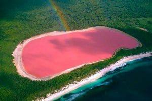 Hồ nước màu hồng Hillier ở Úc mặn ngang biển chết